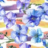Голубой цветок льна Флористический ботанический цветок Безшовная картина предпосылки Стоковое Изображение