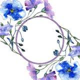Голубой цветок льна Флористический ботанический цветок Квадрат орнамента границы рамки Стоковые Изображения RF