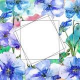 Голубой цветок льна Флористический ботанический цветок Квадрат орнамента границы рамки Стоковое Фото