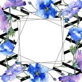 Голубой цветок льна Флористический ботанический цветок Квадрат орнамента границы рамки Стоковые Изображения