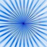 голубой цветок Стоковые Изображения RF