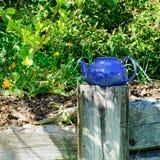 Голубой чайник на столбе загородки в цветочном саде стоковое изображение