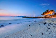 Голубой час на пляже с деревом кокоса Стоковые Фотографии RF