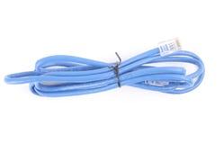 голубой lan кабеля Стоковая Фотография