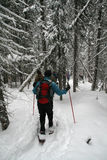 голубой snowshoe рубашки hikers Стоковое фото RF