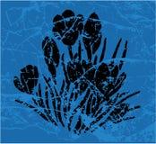 голубо Стоковая Фотография RF