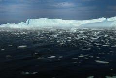 голубые айсберги одна нашивка Стоковое Изображение