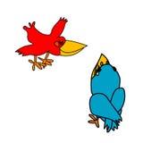 голубые вороны красные Стоковые Изображения