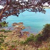 Голубые гаваиские воды стоковое фото rf