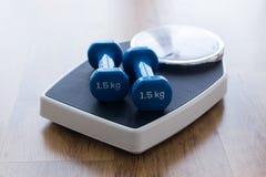 Голубые гантели na górze масштаба веса на деревянной предпосылке в спортзале Стоковое Изображение