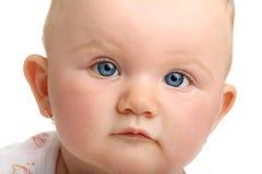 голубые глазы младенца красивейшие изолировали белизну Стоковое Изображение RF