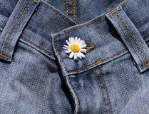 голубые джинсыы детали Стоковое Фото