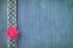 Голубые джинсы текстура, пояс джинсовой ткани, красная роза Стоковые Изображения RF