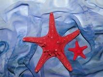 голубые звезды красного цвета ткани Стоковые Изображения