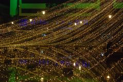 Голубые и желтые света рождества Стоковые Изображения