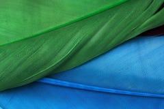 Голубые и зеленые пер стоковые фото