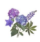 Голубые и фиолетовые цветки Стоковая Фотография