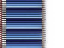 голубые карандаши Стоковые Фото