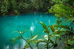 Голубые лагуна и treees - взгляды Рио Celeste вокруг Коста-Рика Стоковые Изображения