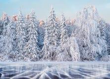 Голубые лед и отказы на поверхности льда Замороженное озеро под голубым небом в зиме Холмы сосен Зима стоковая фотография