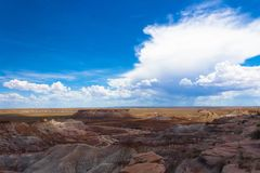 Голубые небеса и неплодородные почвы на окаменелом лесе стоковая фотография