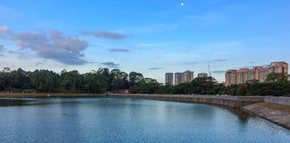 Голубые небеса Macritchie Reservior #2 Стоковая Фотография