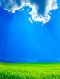 голубые облака field зеленое небо Стоковое Изображение