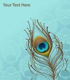 голубые обои павлина пера Стоковое Фото