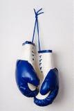 голубые перчатки бокса Стоковые Фото