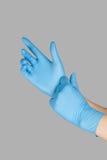 голубые перчатки Стоковое Изображение RF