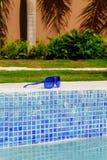Голубые солнечные очки на стороне бассейна стоковая фотография
