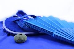голубые тапочки стоковое фото