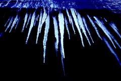 голубые холодные icicles Стоковая Фотография