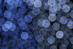 голубые цветастые света Стоковые Фотографии RF