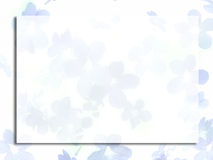 голубые цветки малые Стоковые Фото
