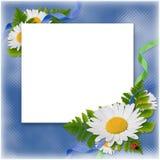 голубые цветки обрамляют тесемки Стоковое Изображение RF