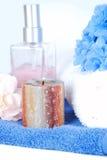 голубые цветки свечки Стоковое Изображение