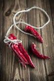 голубые чили пылают горячий излишек красный цвет перца Стоковая Фотография