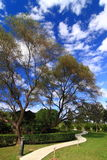 голубым изогнутое облаком пустое небо дороги Стоковое Изображение