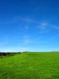 голубым небо поля насыщенное зеленым цветом Стоковые Изображения RF