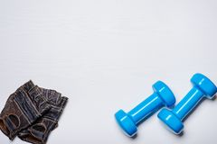 2 голубых гантели лежа на белой предпосылке, вместе с перчатками спорта с текстурой дерева Стоковые Фотографии RF