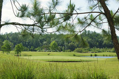 гольф дня Стоковое Изображение