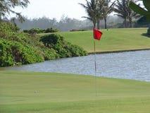гольф зеленые Гавайские островы Стоковое Фото
