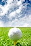 гольф курса шарика Стоковая Фотография