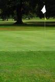 гольф курса Стоковая Фотография RF