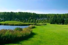 гольф поля стоковые фото
