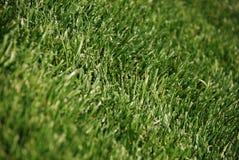 гольф Стоковая Фотография RF