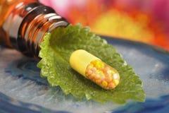 Гомеопатические глобулы как терапия Стоковое Фото