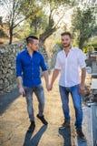 2 гомосексуалиста в парке рука об руку Стоковое Фото
