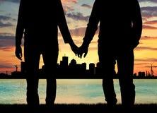 Гомосексуалисты силуэта счастливые держа руки Стоковые Изображения